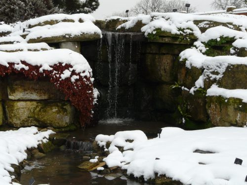 Kew in snow